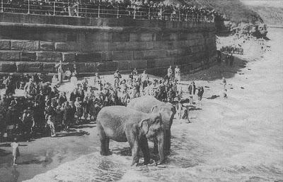 Maharajah's Elephants at Whitby
